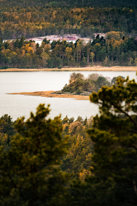 Sophie Dorn - Photography Journal - Åland Islands - Finland - Autumn Ruska Falun Red (14 of 34).jpg