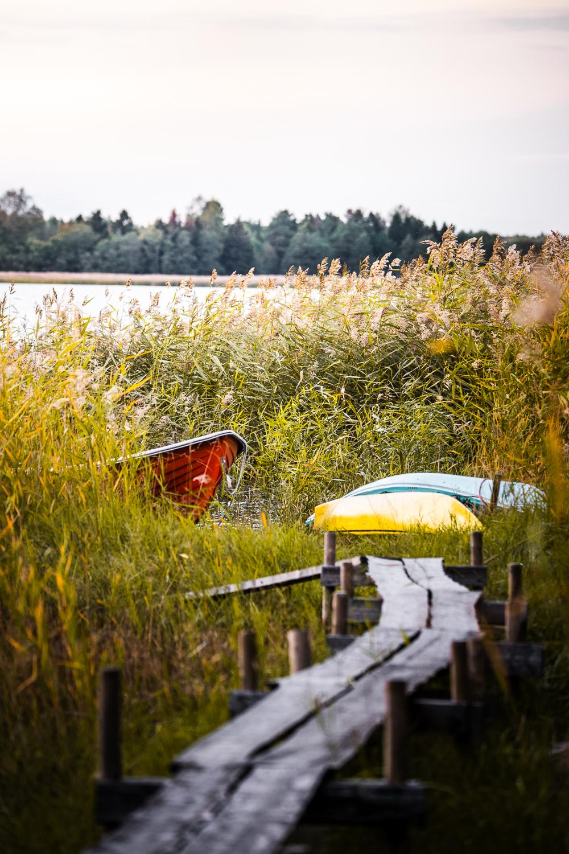Sophie Dorn - Photography Journal - Åland Islands - Finland - Autumn Ruska Falun Red (17 of 34).jpg
