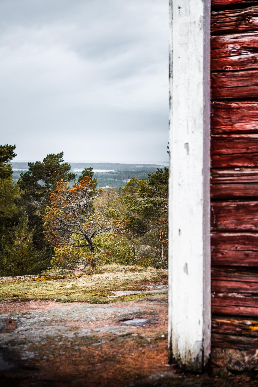 Sophie Dorn - Photography Journal - Åland Islands - Finland - Autumn Ruska Falun Red (30 of 34).jpg
