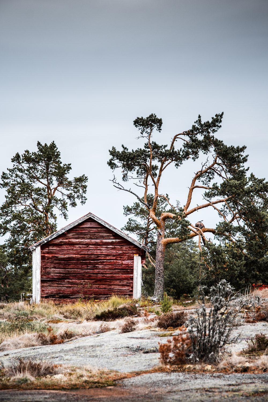 Sophie Dorn - Photography Journal - Åland Islands - Finland - Autumn Ruska Falun Red (27 of 34).jpg