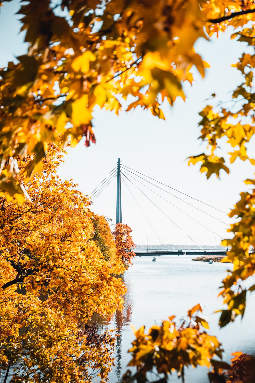 Sophie Dorn - Vanhakaupunki - Ruska, Helsinki, Finland, Annalan Huvila (21 of 44).jpg