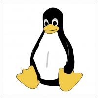 linux_tux_67671.jpg
