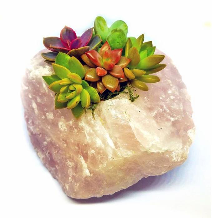 rose-quartz-planter-1.png