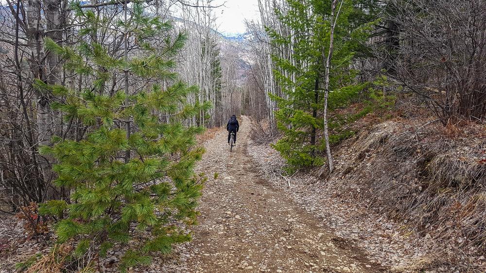 Mountain Biking down the Columbia River Trail, Trail BC