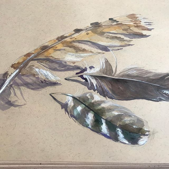 Sometimes, it's just about the beauty of nature ✨ #watercolor #featherstudy #art&design