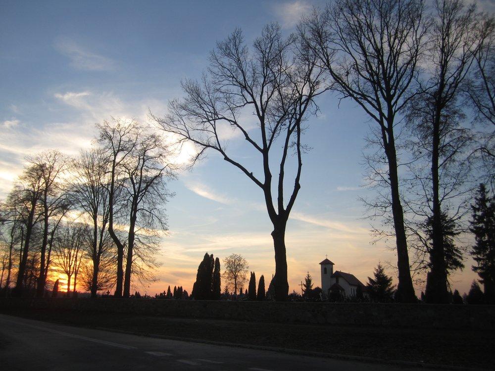 Zuromin cemetery.jpg