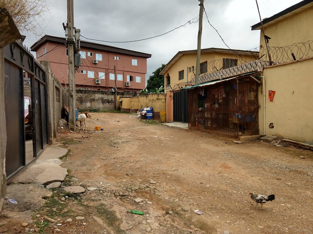 A chicken wanders a housing estate street in Lagos.
