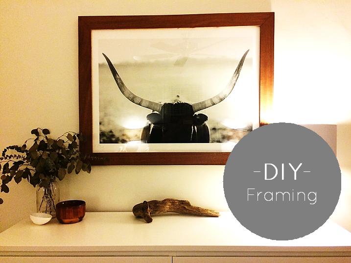 DIYFraming
