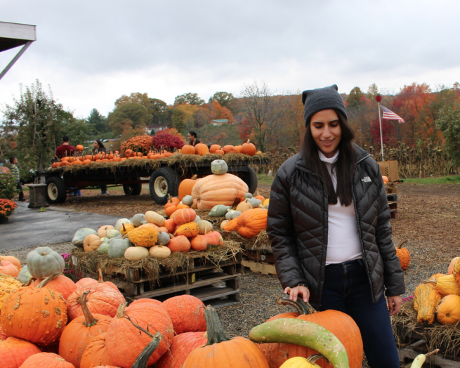 pumpkin patch fashion blogger