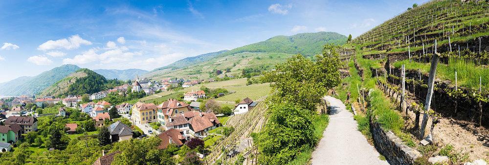Wachau vineyards and villages