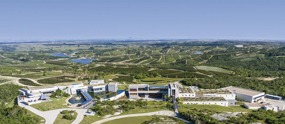 Bodega Garzón's impressive visitor facilities and vineyards