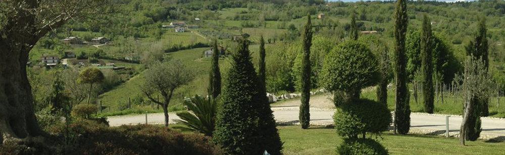 The gardens at Cantina Donnachiara
