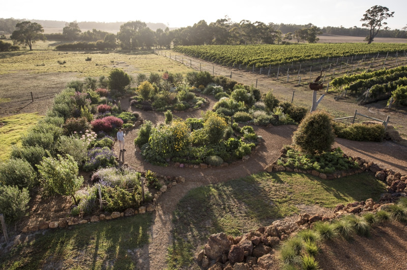 The Wine Sensory Garden at Whicher Ridge