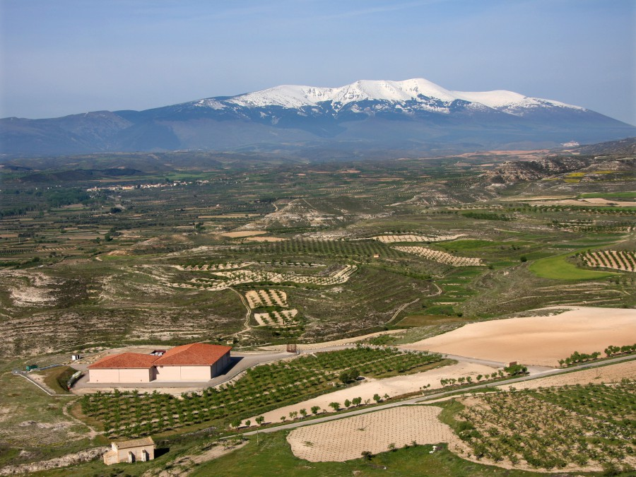 The vineyards of Bodegas Alto Moncayo with the Moncayo mountain in the background. The regional mountain ranges have a significant effect on the climate in these high altitude vineyards.