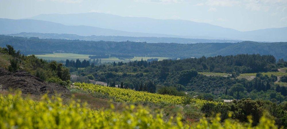 The southern Rhône - where the best of God's handiwork meets the best of humankind's handiwork at Domaine de la Mordorée