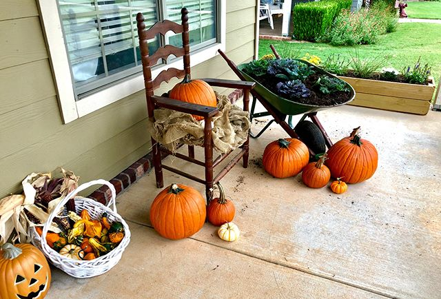 For the first day of fall I got my front porch ready 🙌🏼 #pumpkins #fallishere #decorating #simplekitchengardens #wheelbarrow