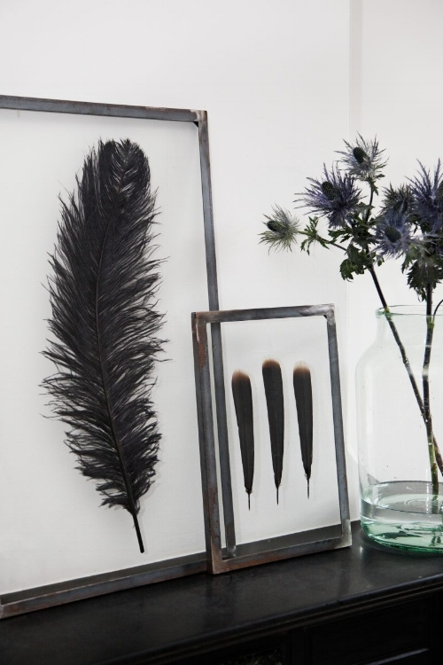 Home Feather Display