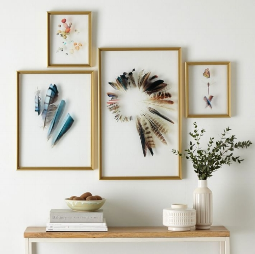 Framed Feathers For The Home