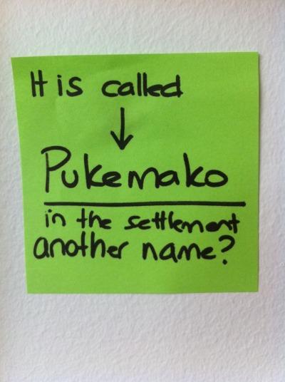 Pukemako