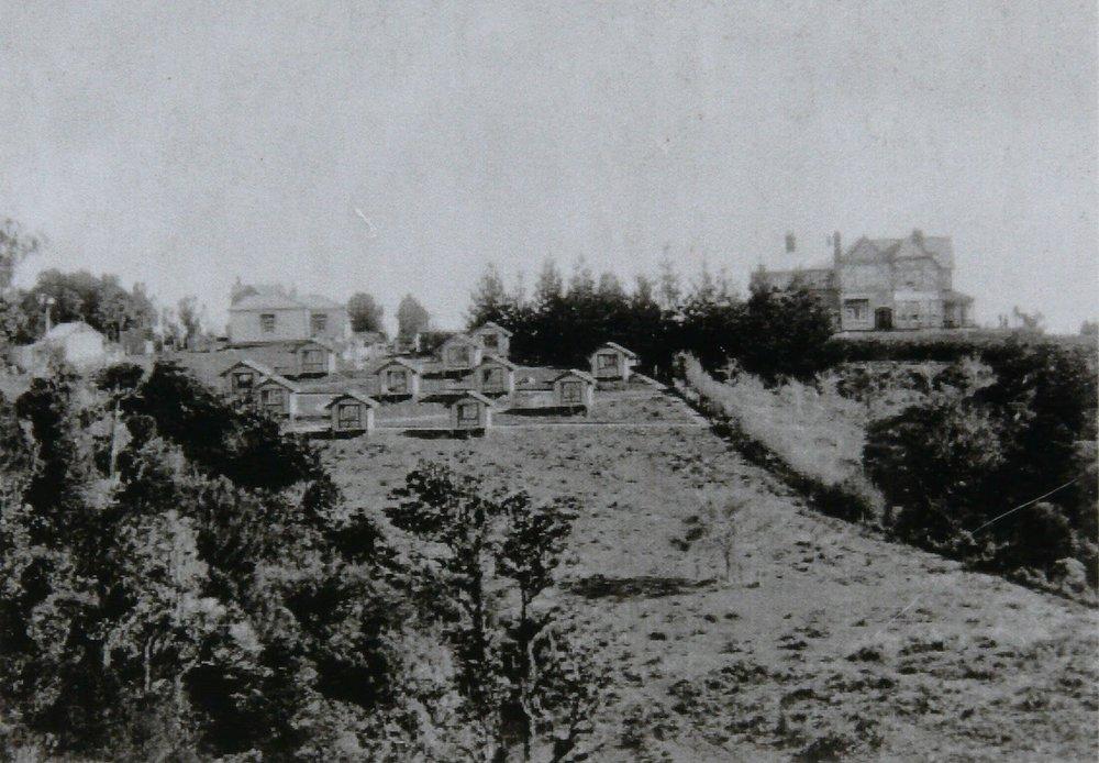 Te Waikato Tuberculosis Sanitorium