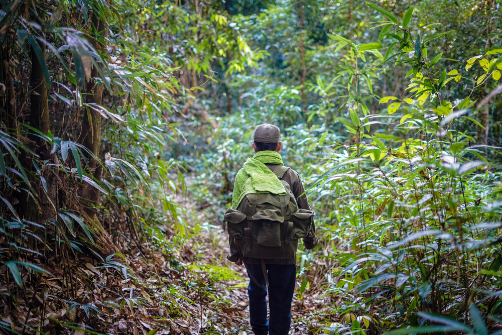 Trekking in Nam-Et Phou Louey National Protected Area