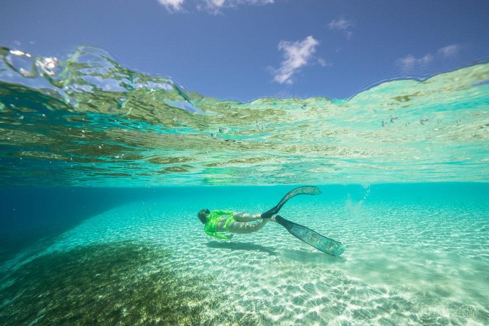 tonga-beach-dive-swim-tropical.jpg
