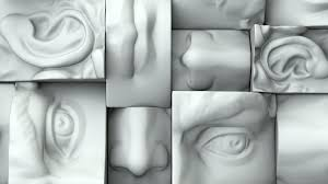 five senses.jpg