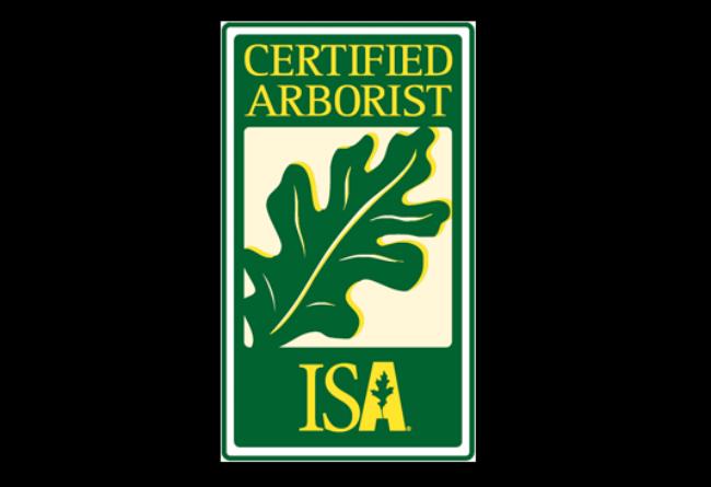 certified-arborist.png
