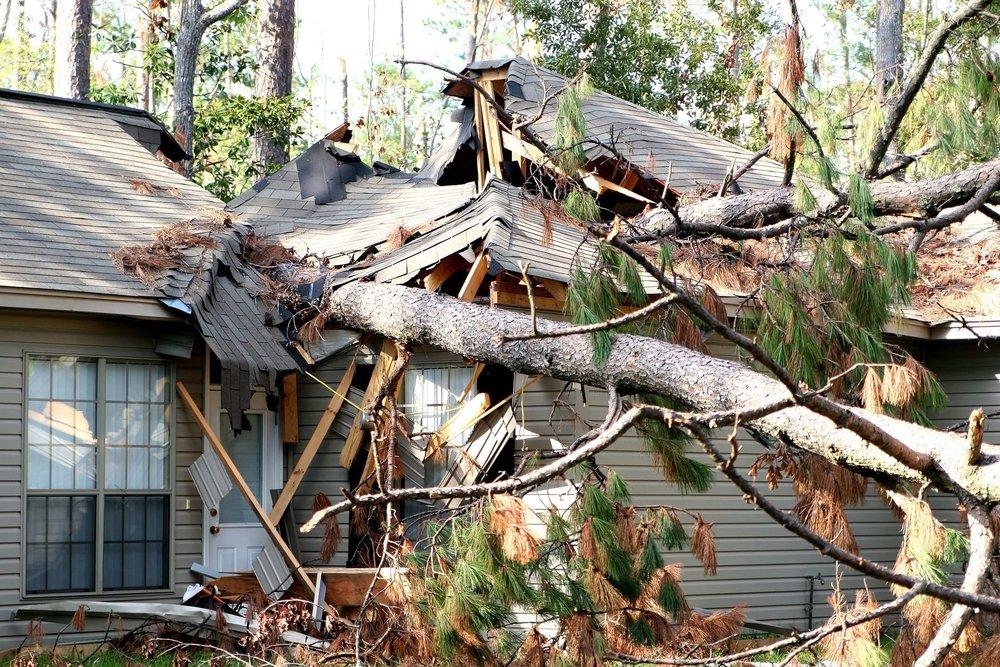 Emergency tree storm damage