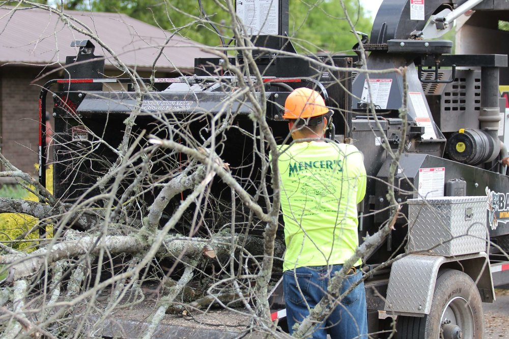 Mencer's Tree Service Chipper and Removal of Tree Limbs