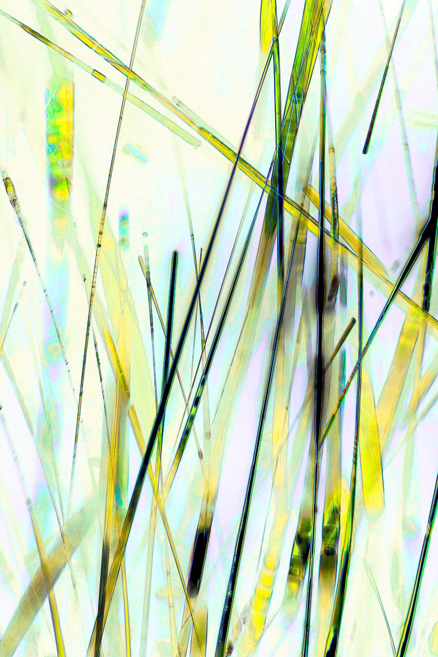 013_Crystal#13_40xlf.jpg