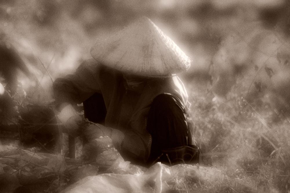 vietnam+sepia+004.jpg