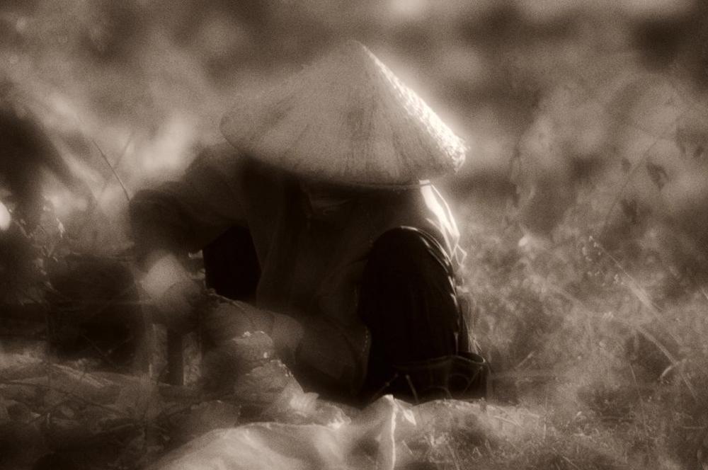 vietnam+sepia+034.jpg