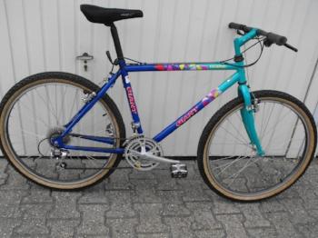 mountain bike 1990s.JPG