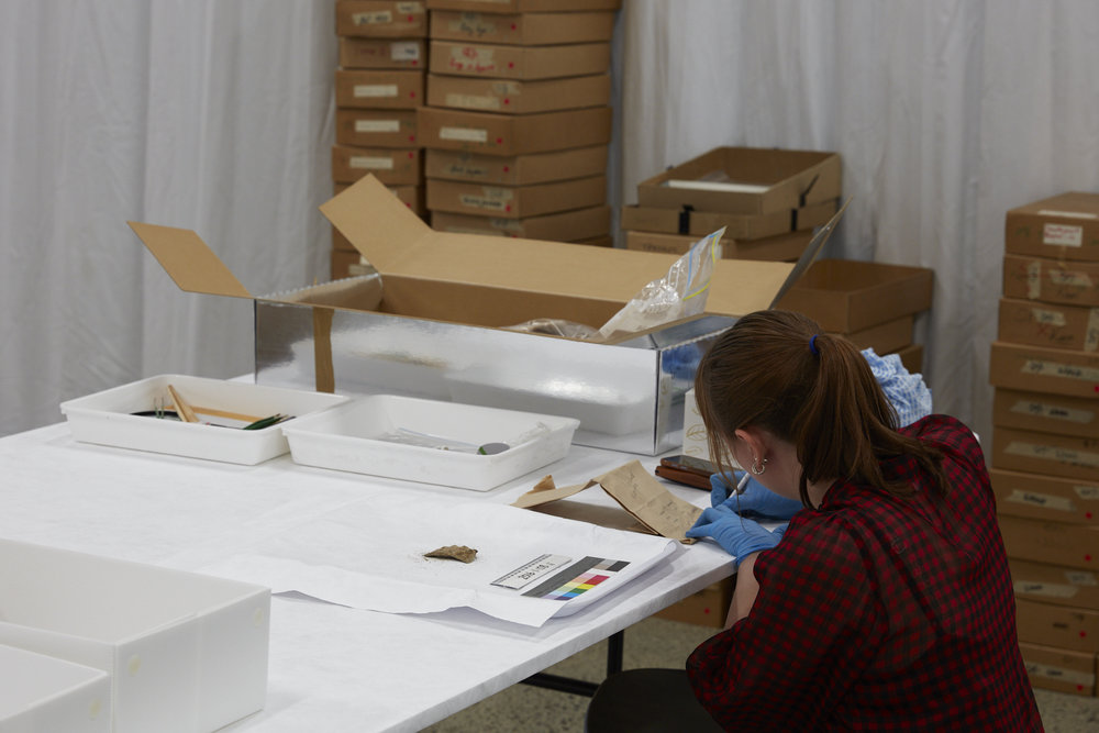 Alex Monteith,  Repacking the Past , ongoing cataloguing project. Cataloguing archaeological material excavated from Te Mimi o Tū Te Rakiwhānoa (Fiordland coastal and marine area) 1968–72. Pictured: Lori Bowers.