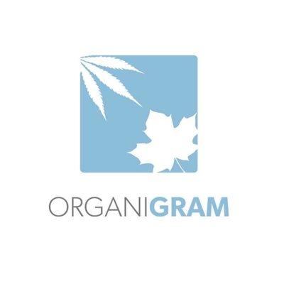 organigram.jpg