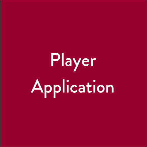 PlayerApplication.png