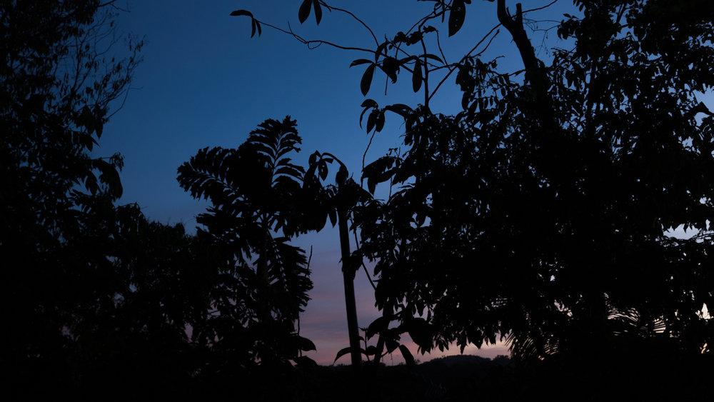 sunrise-6113.jpg