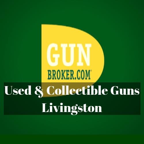 Gunbroker (4).jpg