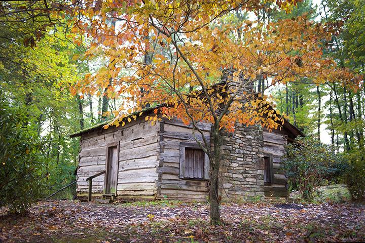 tatum cabin, 120.jpg