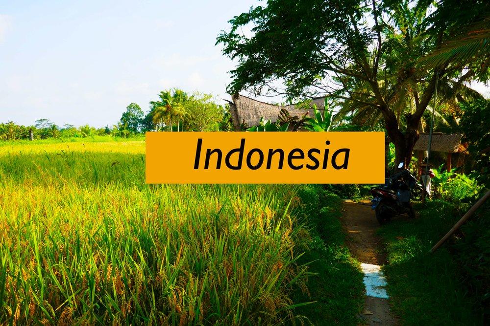 Indonesia---Tile-2.jpg