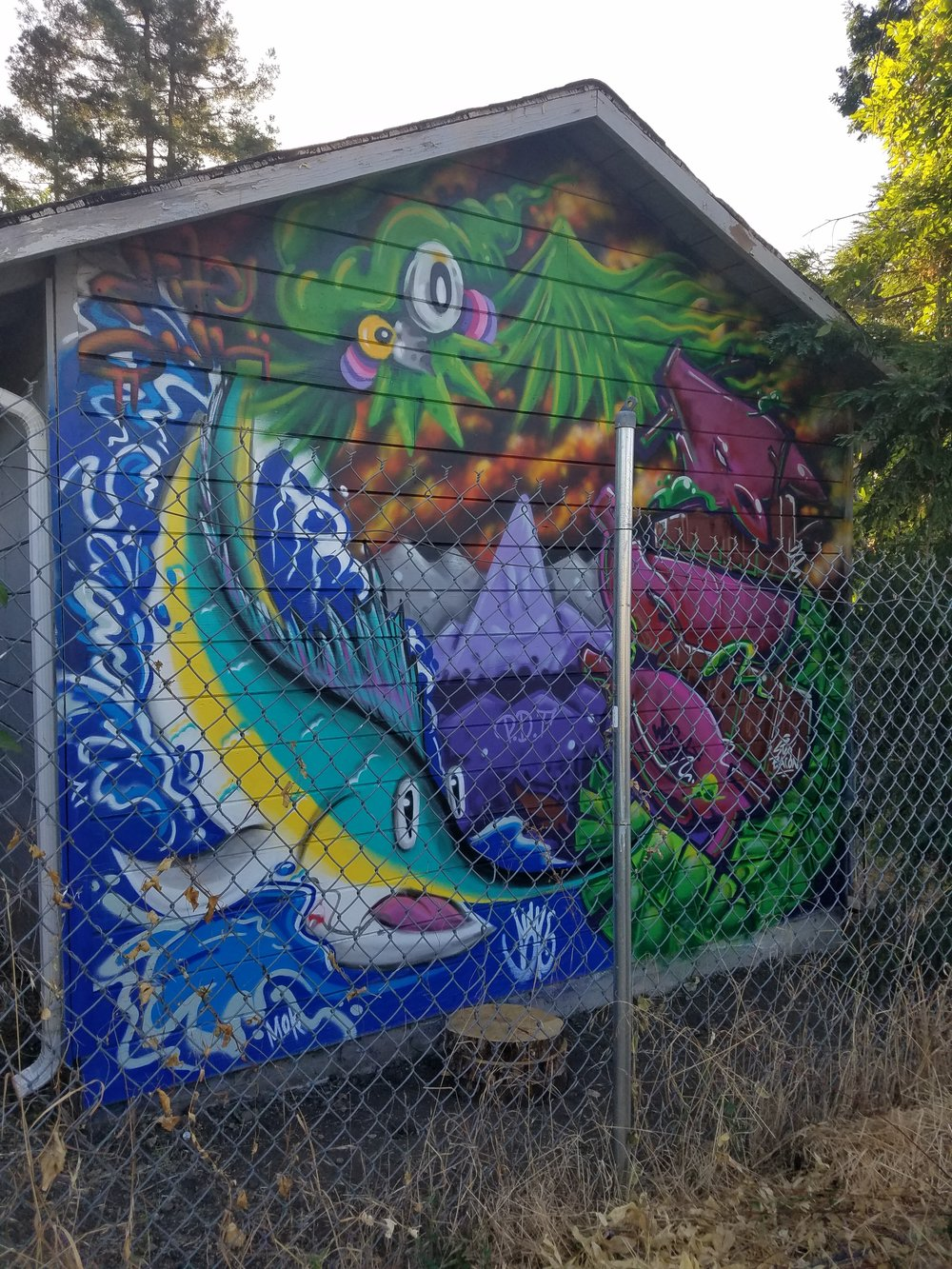 Land, Air, Sea Theme Mural For Client Collaboration with Nite Owl and Stay Bacon Walnut Creek 2018