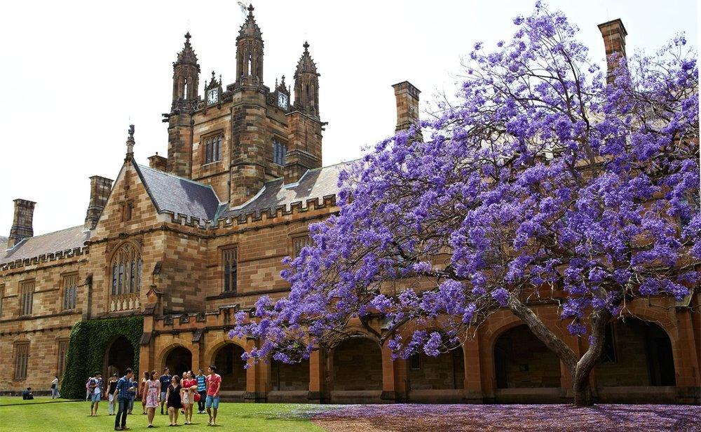 Photo Source: University of Sydney Website