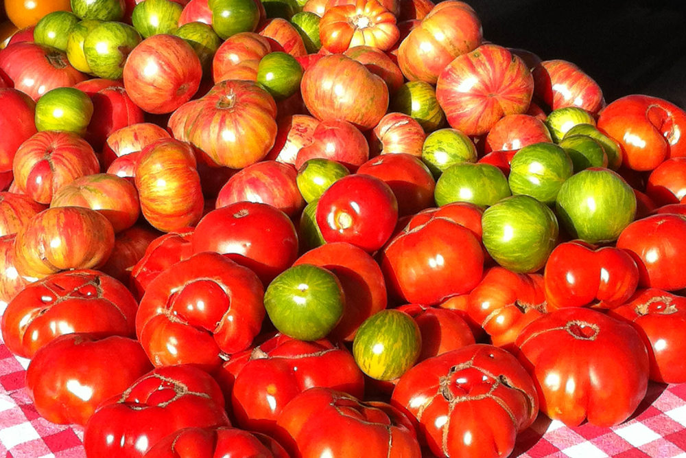 Heirloom Tomatoes at the South Lake Tahoe Farmers Market