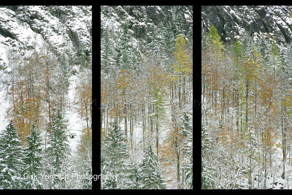 Hallstatt Austria Snow Trees Triptych