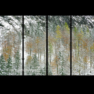 Hallstatt Austria Snow Trees Triptych Dirk Yuricich Photography