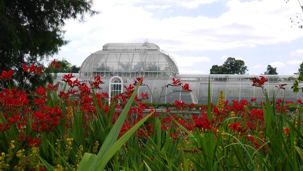Crystal Palace Kew.JPG