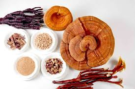 """Besides… - its anti-tumor and immuno-modulatory properties, Reishi also helps counteract stress. The crude extract of Reishi has been found to be more effective in fighting free-radical damage than isolated, synthetic compounds. It also contains bitter triterpenes. These strengthen the circulatory and immune systems, tone the liver and protect the body from physical stress."" - Michael Tierra"