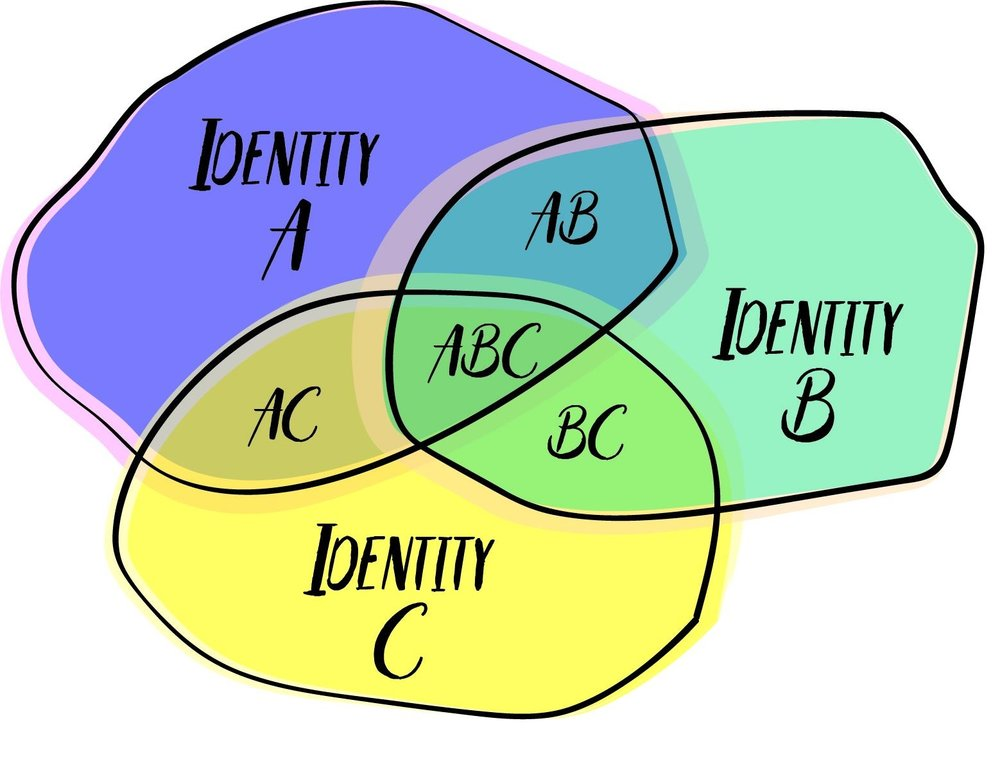 HYBRID PROFESSIONAL IDENTITIES FORM AT THE INTERSECTIONS OF OUR PRIMARY PROFESSIONAL IDENTITIES.