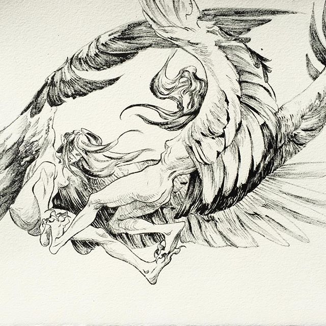 Inktober day six - dry brush is pretty dope . . . . . . . #inktober #inktober2017 #inktoberday6 #drybrush #harpies #ink #fantasy